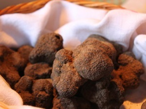 truffes-valberg-anne-salle-mikuy